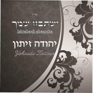 יהודה זיתון באלבום חדש ושני סינגלים