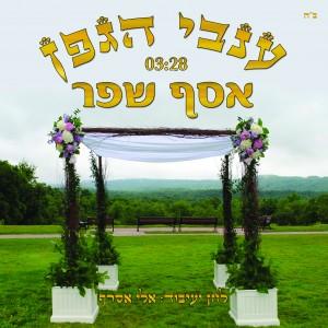 אסף שפר בשיר מקפיץ לחתונות - ענבי הגפן